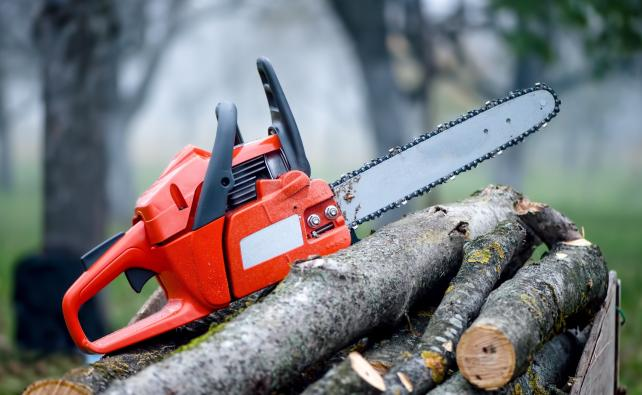 Chainsaw Operator Intermediate at the Emcare Training Academy